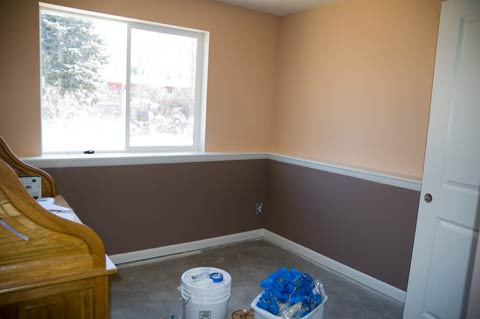 Soothing Paint Colors For Office tiger coating: brown color paint for office